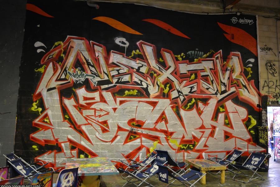 Photo de NOSMY, NEXER, réalisée au Maquis-art Wall of fame - L'aérosol, Paris