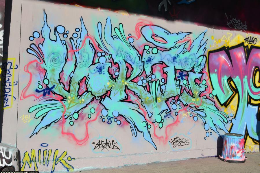 Photo de VORTIE, réalisée au Maquis-art Wall of fame - L'aérosol, Paris