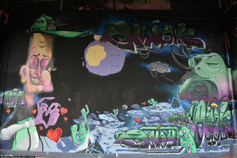 Photo de OMOUK, FR75, FLM, réalisée au Maquis-art Wall of fame - L'aérosol, Paris