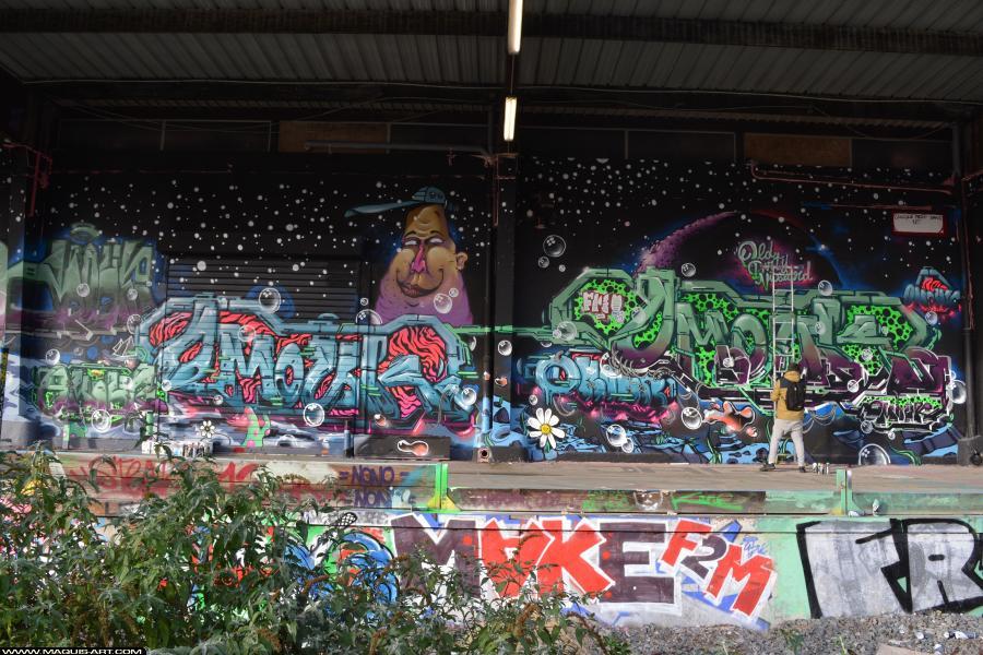 Photo de ODV, FR75, FLM, réalisée au Maquis-art Wall of fame - L'aérosol, Paris