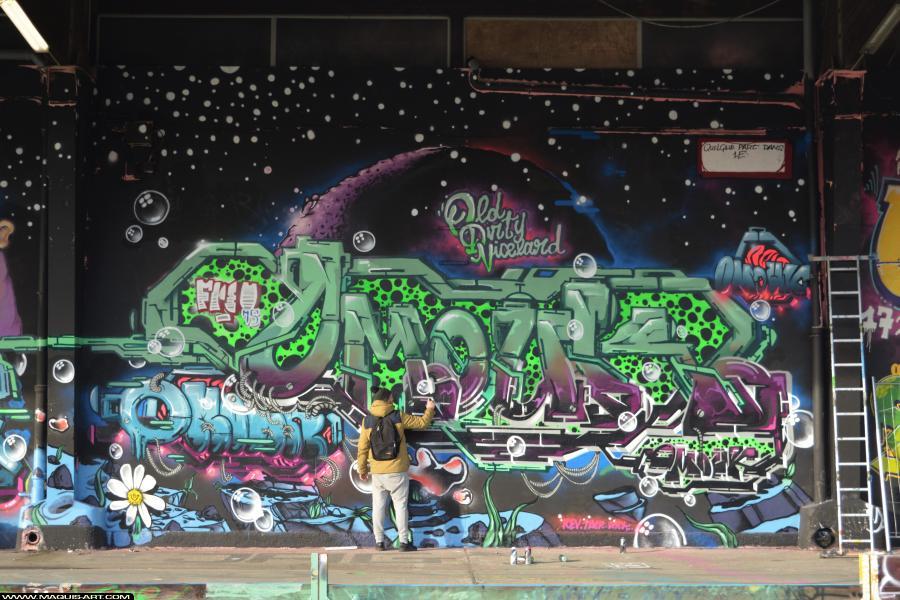 Photo de OMOUK, ODV, FR75, FLM, réalisée au Maquis-art Wall of fame - L'aérosol, Paris