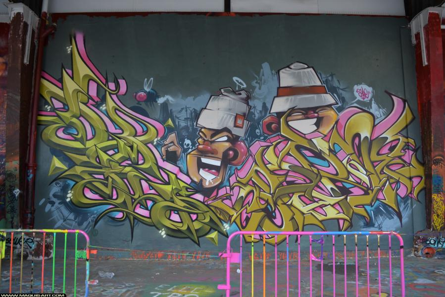 Photo de DAMS (HEC ODV), ESPER, ZCAPE, réalisée au Maquis-art Wall of fame - L'aérosol, Paris