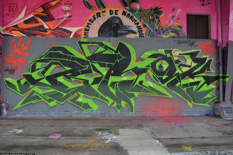Photo de BROK, 3HC, VBA, TNB, réalisée au Maquis-art Wall of fame - L'aérosol, Paris