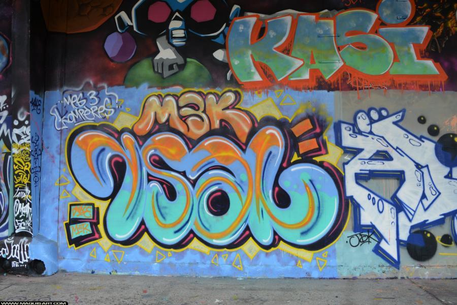 Photo de RSAL, M3K, M3K, réalisée au Maquis-art Wall of fame - L'aérosol, Paris