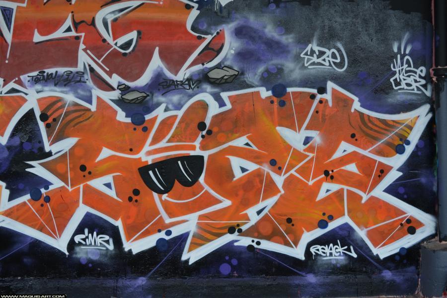 Photo de SIZE, CBR, réalisée au Maquis-art Wall of fame - L'aérosol, Paris