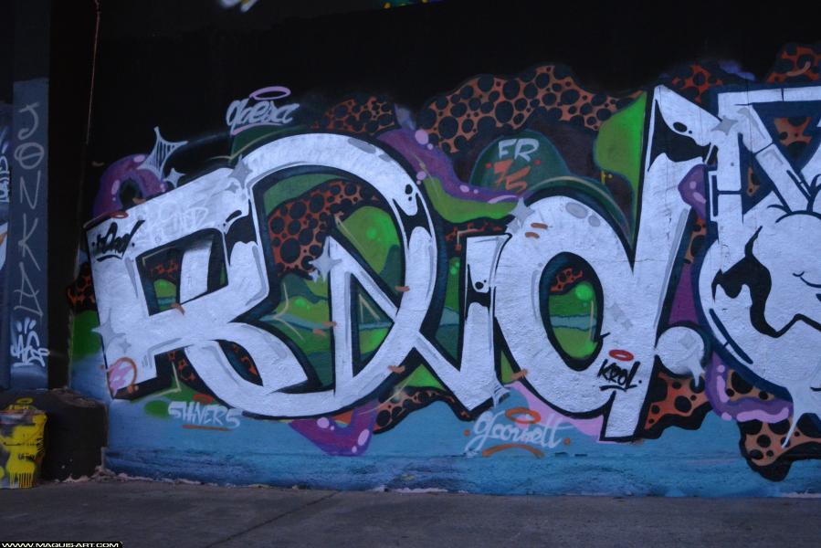 Photo de ROND, FR75, réalisée au Maquis-art Wall of fame - L'aérosol, Paris