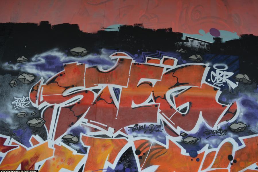 Photo de STEG, CBR, réalisée au Maquis-art Wall of fame - L'aérosol, Paris