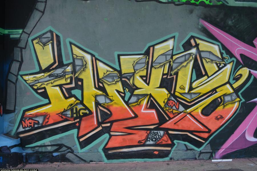 Photo de ODV, MCT, 3AD, INXY, réalisée au Maquis-art Wall of fame - L'aérosol, Paris
