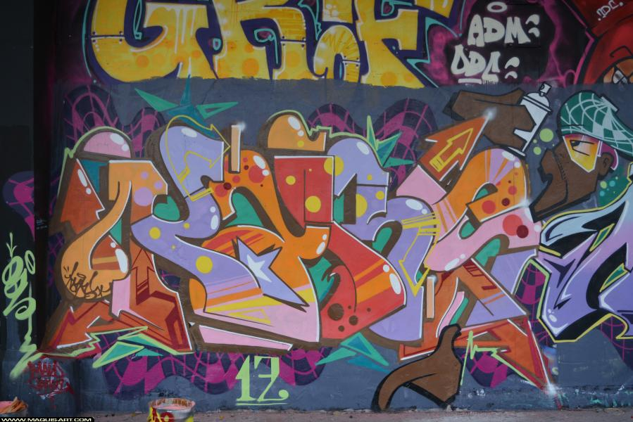 Photo de KARS, réalisée au Maquis-art Wall of fame - L'aérosol, Paris