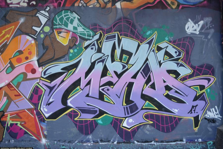 Photo de MEHA, réalisée au Maquis-art Wall of fame - L'aérosol, Paris