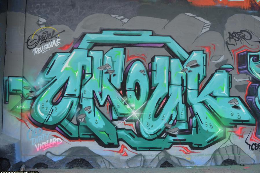 Photo de OMOUK, ODV, réalisée au Maquis-art Wall of fame - L'aérosol, Paris
