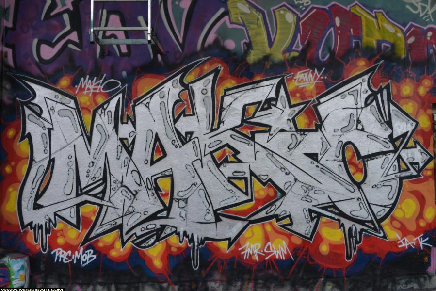 Photo de MAKIO, PRC, MOB, 7MR, SWM, TK, réalisée au Maquis-art Wall of fame - L'aérosol, Paris
