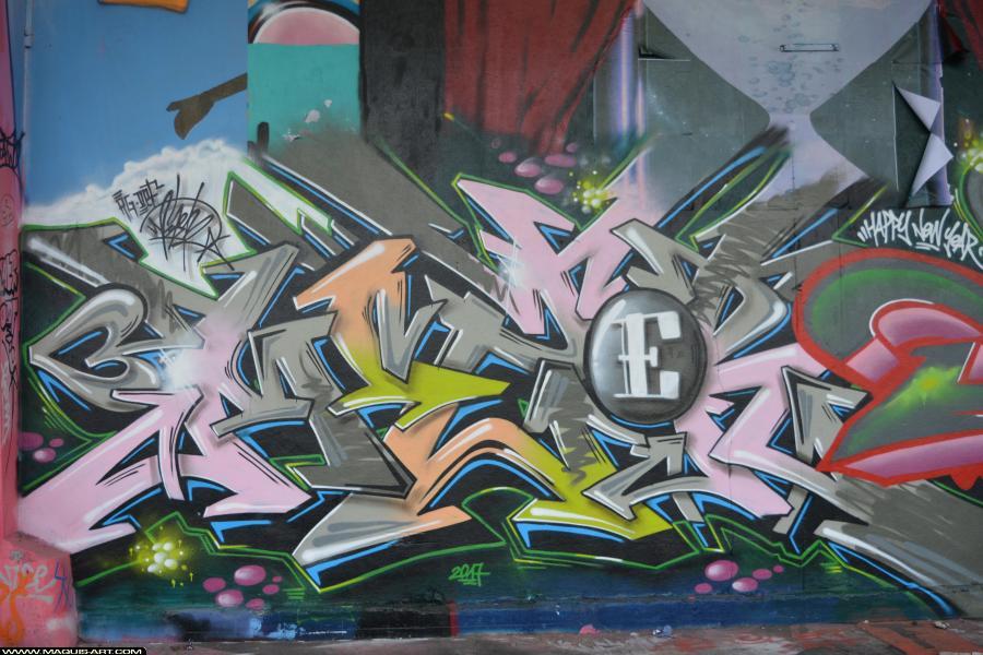 Photo de MIZER, DEF, réalisée au Maquis-art Wall of fame - L'aérosol, Paris