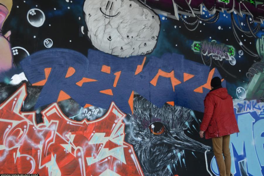 Photo de REKIZ, réalisée au Maquis-art Wall of fame - L'aérosol, Paris