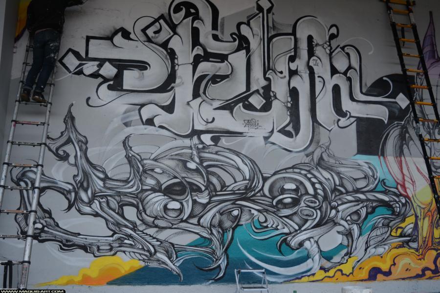Photo de FLUIDE, HOROR, réalisée au Maquis-art Wall of fame - L'aérosol, Paris