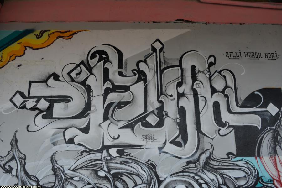 Photo de FLUIDE, NORIONE, HOROR, réalisée au Maquis-art Wall of fame - L'aérosol, Paris