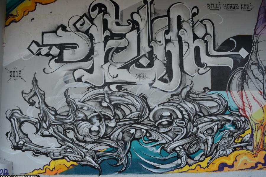 Photo de FLUIDE, HOROR, NORIONE, réalisée au Maquis-art Wall of fame - L'aérosol, Paris
