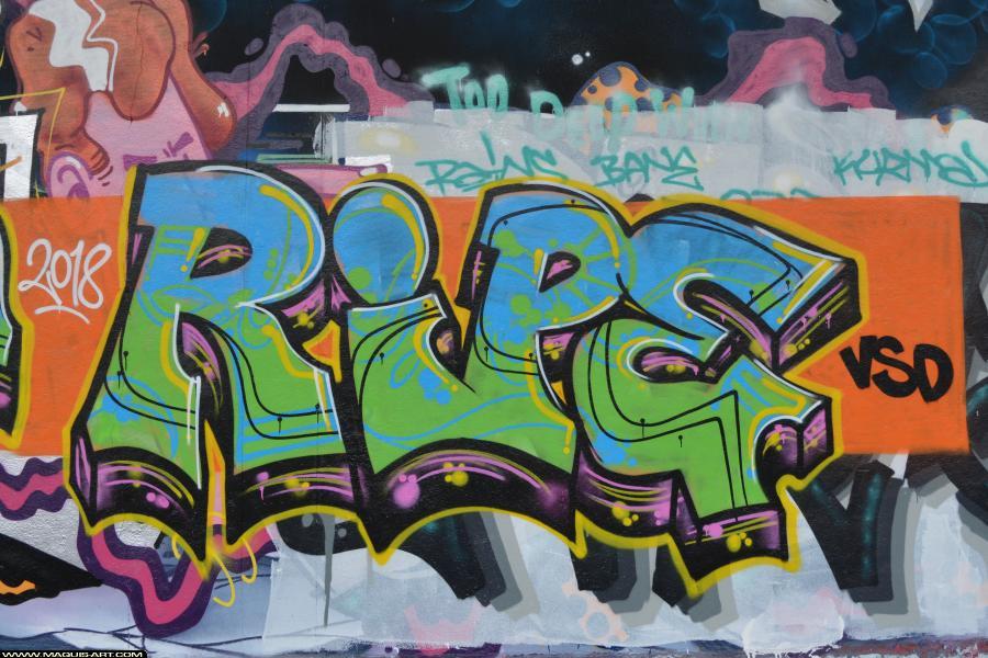 Photo de RIPE, 184, VSD, réalisée au Maquis-art Wall of fame - L'aérosol, Paris