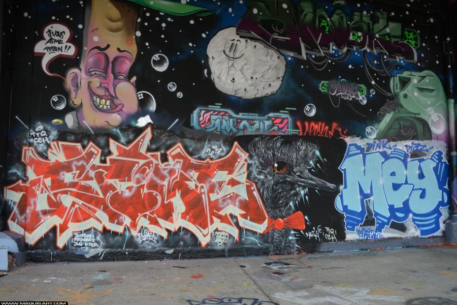 Photo de STIME, MEY, ???, TTQ, CCH, réalisée au Maquis-art Wall of fame - L'aérosol, Paris