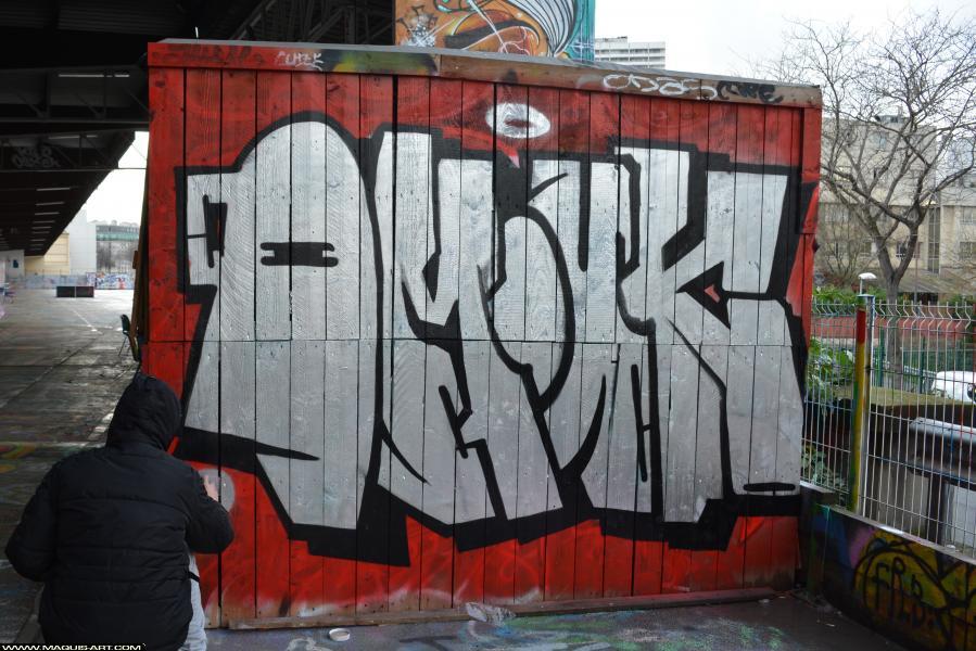 Photo de OMOUK, FR75, ODV, réalisée au Maquis-art Wall of fame - L'aérosol, Paris