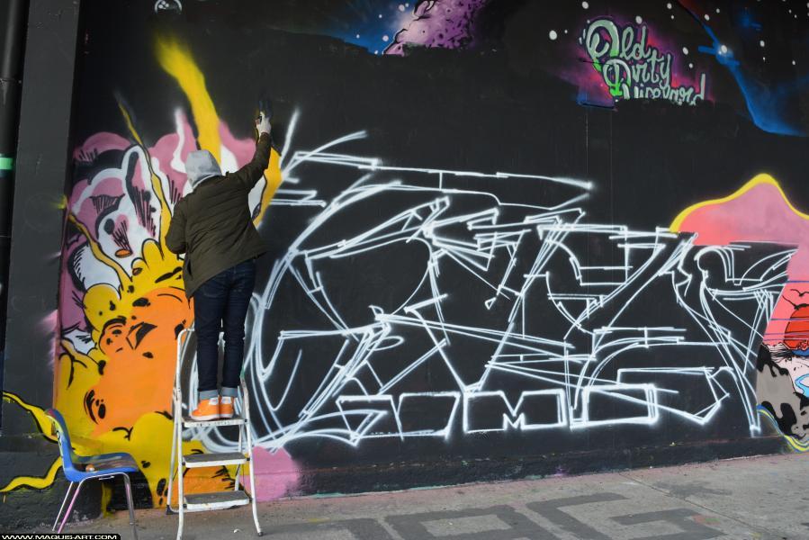 Photo de CRAZER, VMD, réalisée au Maquis-art Wall of fame - L'aérosol, Paris