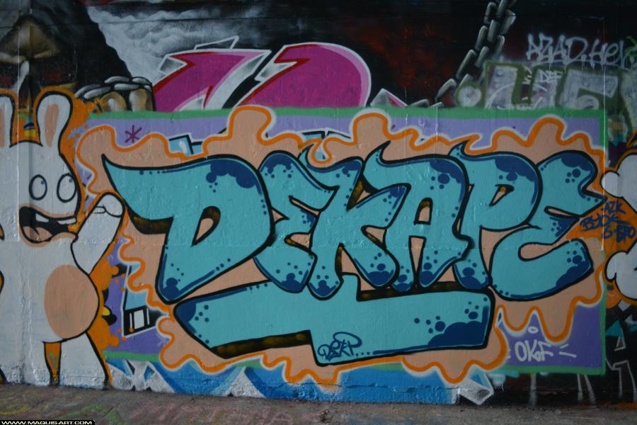 Photo de DEKAPE, réalisée au Maquis-art Wall of fame - L'aérosol, Paris