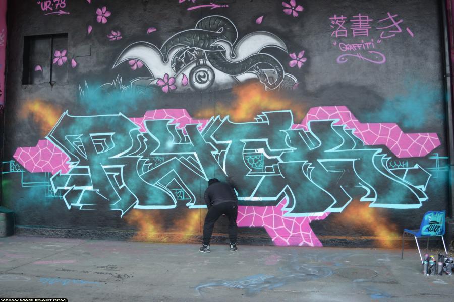 Photo de RYCK, PCP, MFC, 666, TW, USA, réalisée au Maquis-art Wall of fame - L'aérosol, Paris