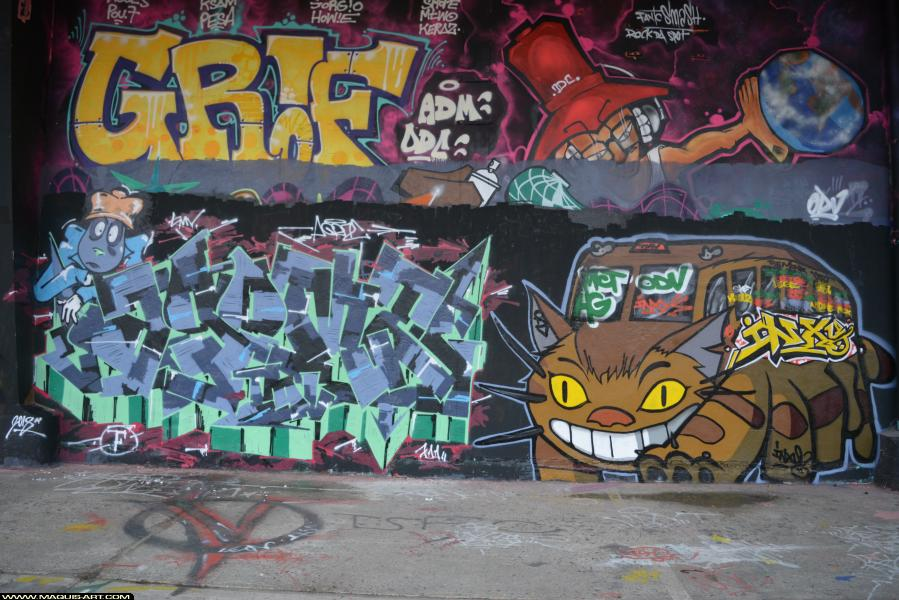 Photo de INXY, ODV, MCT, HG, TMV, AGOMER, GRIF, réalisée au Maquis-art Wall of fame - L'aérosol, Paris