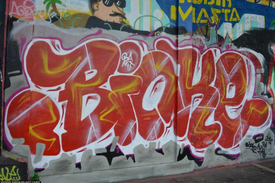Photo de BIOKE, BA, réalisée au Maquis-art Wall of fame - L'aérosol, Paris