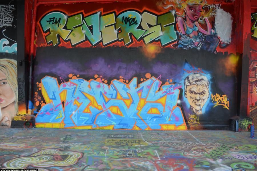 Photo de NESTA, TVA, DKA, 156, réalisée au Maquis-art Wall of fame - L'aérosol, Paris