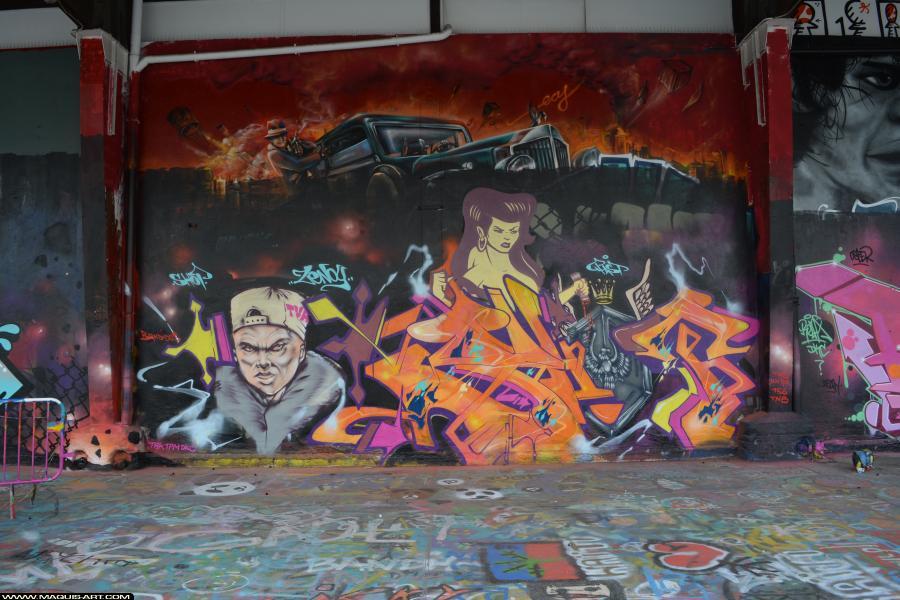 Photo de FAST, réalisée au Maquis-art Wall of fame - L'aérosol, Paris