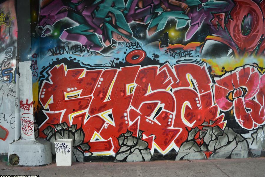 Photo de FYSA, LFE, réalisée au Maquis-art Wall of fame - L'aérosol, Paris