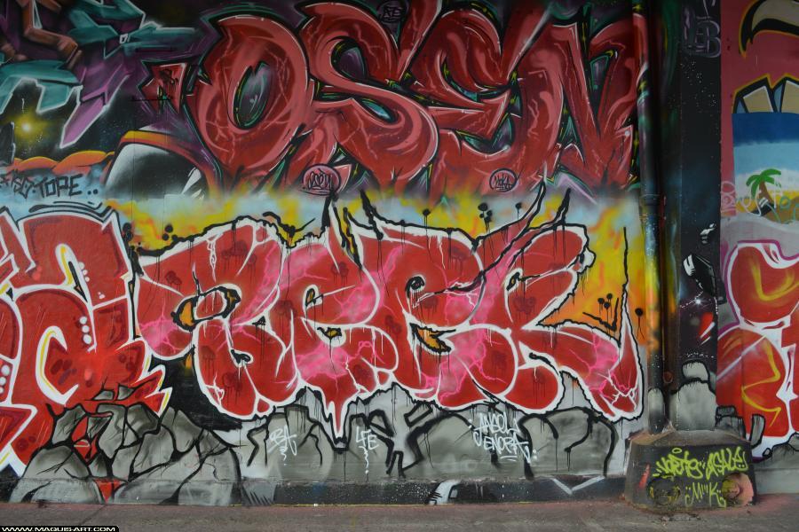 Photo de BEER, réalisée au Maquis-art Wall of fame - L'aérosol, Paris