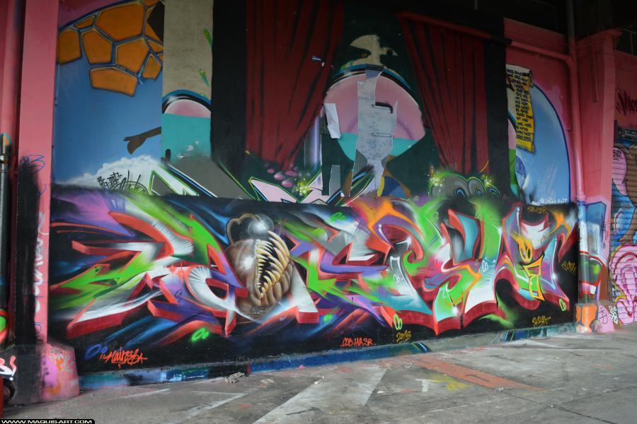 Photo de RAINS, PSHIT, KSR, CDB, réalisée au Maquis-art Wall of fame - L'aérosol, Paris