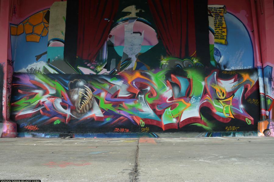 Photo de RAINS, KSR, PSHIT, CDB, réalisée au Maquis-art Wall of fame - L'aérosol, Paris