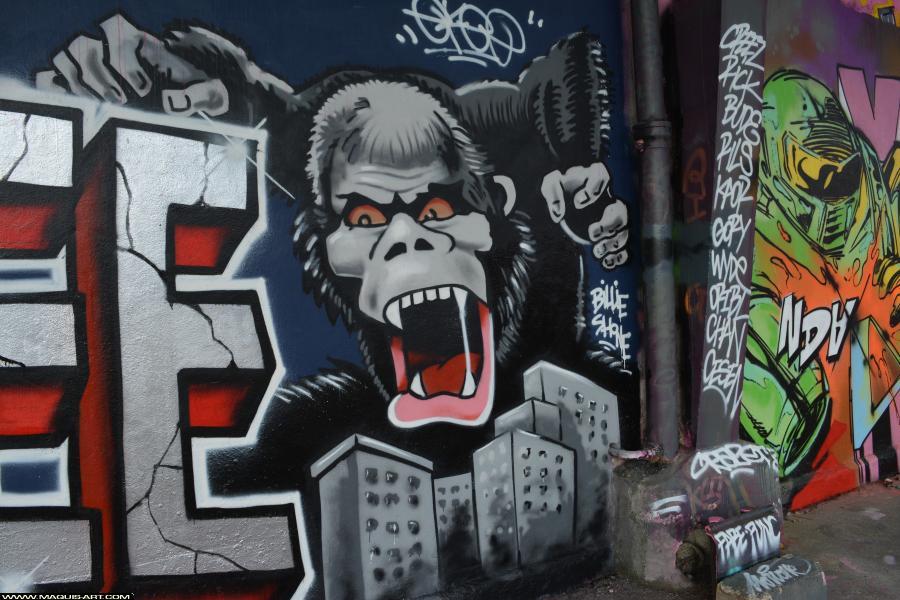 Photo de LARS, CKT, 3DT, WS, CMS, réalisée au Maquis-art Wall of fame - L'aérosol, Paris