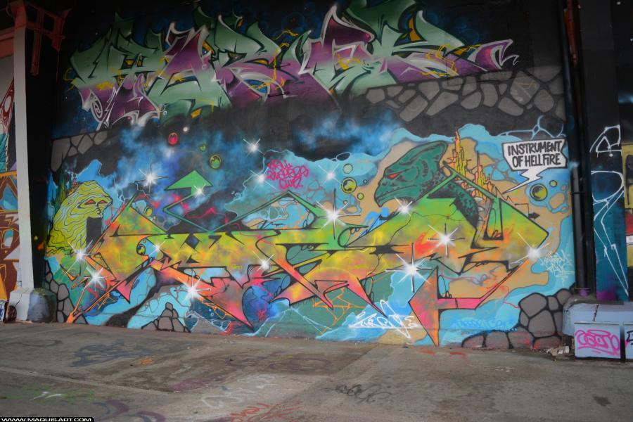 Photo de FUNC88, BST, réalisée au Maquis-art Wall of fame - L'aérosol, Paris
