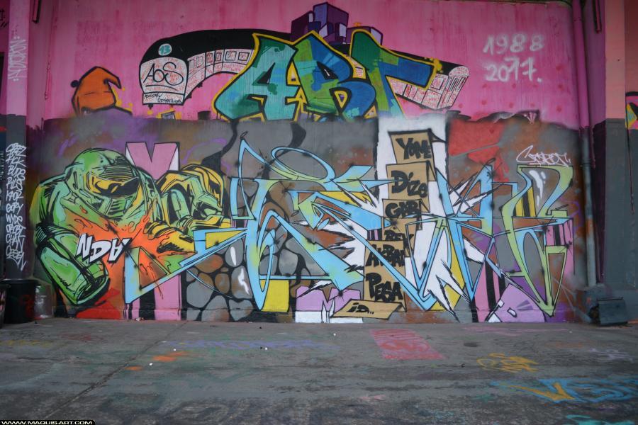 Photo de CRAZER, NDA, réalisée au Maquis-art Wall of fame - L'aérosol, Paris