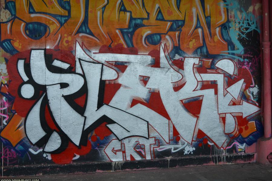 Photo de PLEK, CKT, réalisée au Maquis-art Wall of fame - L'aérosol, Paris