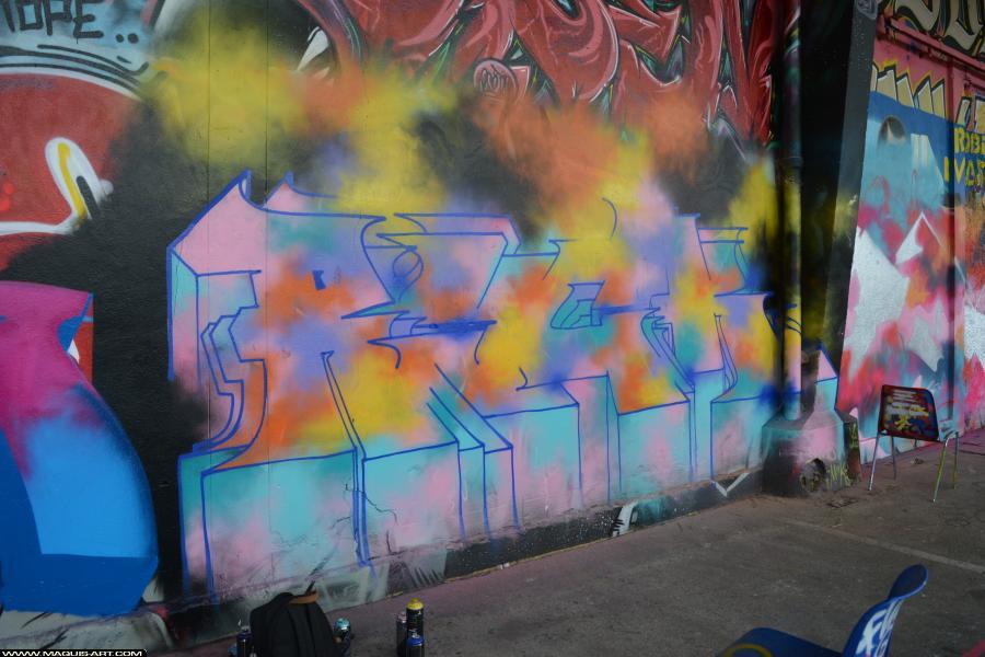 Photo de RYCK, 666, MFC, VAD, TW, PCP, USA, réalisée au Maquis-art Wall of fame - L'aérosol, Paris