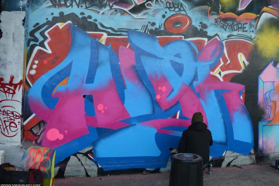 Photo de HIGH1, BSD, réalisée au Maquis-art Wall of fame - L'aérosol, Paris