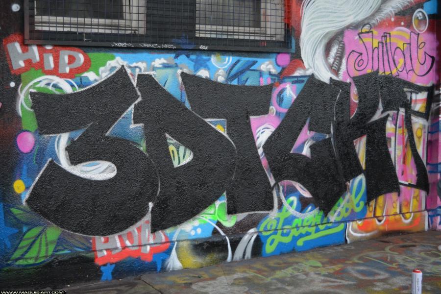 Photo de 3DT, CKT, réalisée au Maquis-art Wall of fame - L'aérosol, Paris