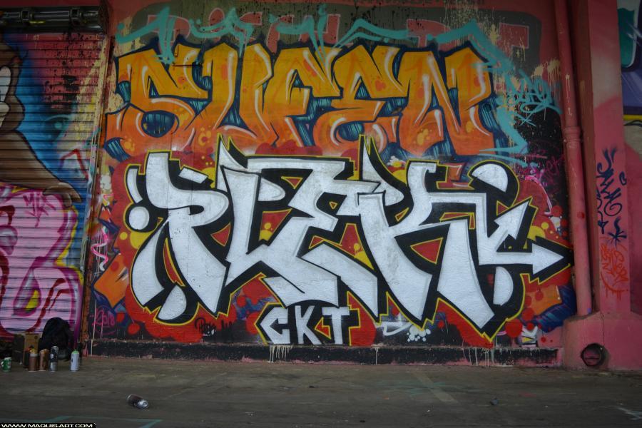 Photo de PLEK, SUFEN, CKT, réalisée au Maquis-art Wall of fame - L'aérosol, Paris