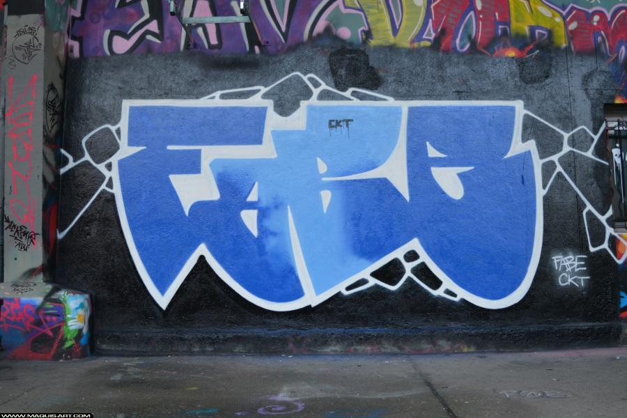 Photo de FABE, CKT, réalisée au Maquis-art Wall of fame - L'aérosol, Paris