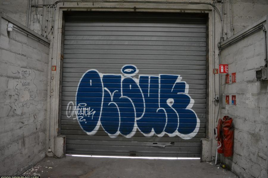 Photo de OMOUK, réalisée au Maquis-art Wall of fame - L'aérosol, Paris