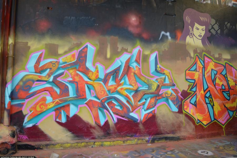 Photo de 2RODE, CKT, D77, DKA, 90DBC, VMD, NST, RIP, réalisée au Maquis-art Wall of fame - L'aérosol, Paris