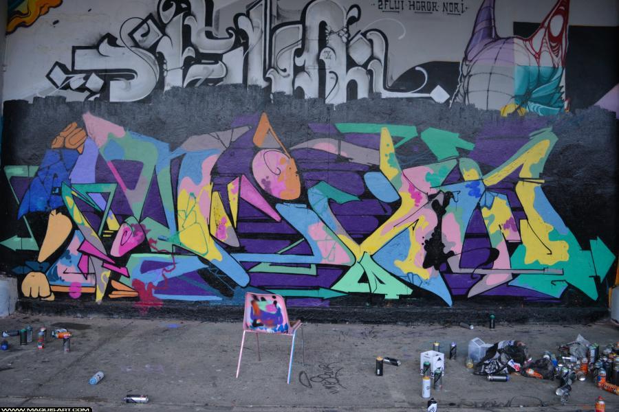 Photo de DIKSA, réalisée au Maquis-art Wall of fame - L'aérosol, Paris