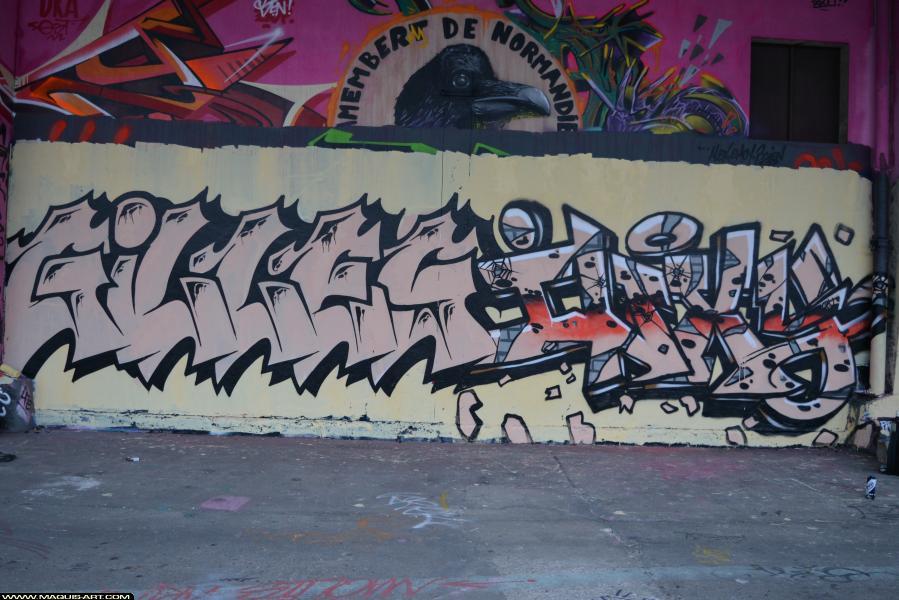 Photo de GILLES, INXY, réalisée au Maquis-art Wall of fame - L'aérosol, Paris
