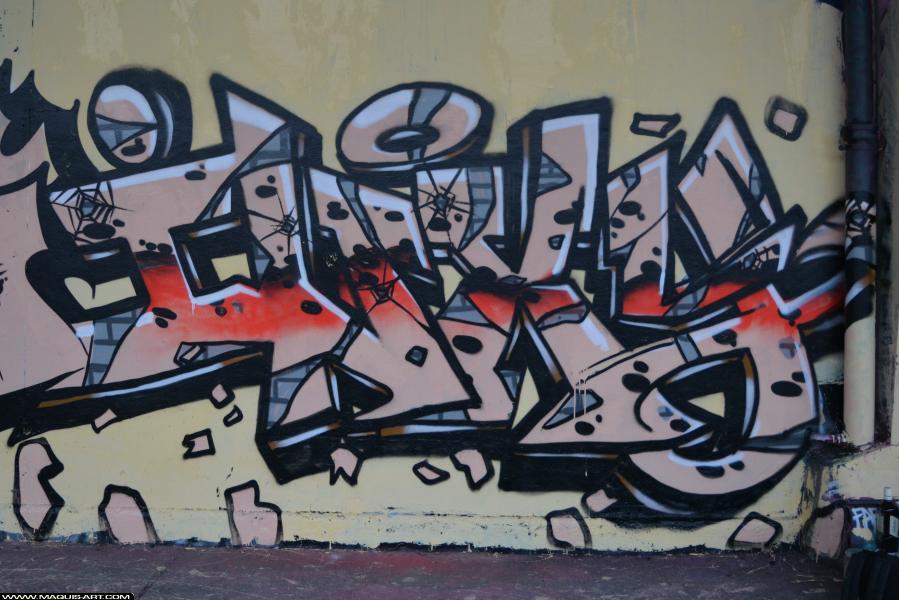 Photo de INXY, MCT, 3AD, HG, 3AD, TMV, ODV, réalisée au Maquis-art Wall of fame - L'aérosol, Paris