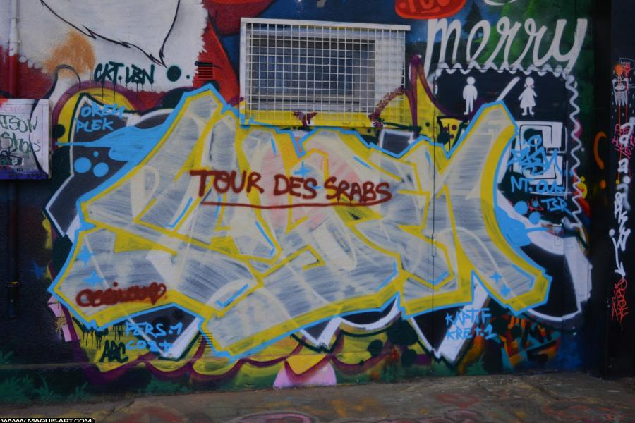Photo de SAYEN, NT, OVK, TSR, réalisée au Maquis-art Wall of fame - L'aérosol, Paris